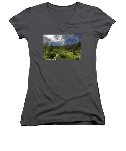 Blue And Green Women's V-Neck T-Shirt