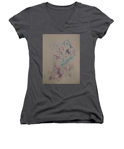 Blue And Purple Cat Women's V-Neck T-Shirt