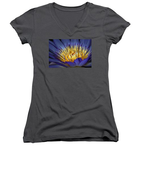 Blue And Yellow Women's V-Neck