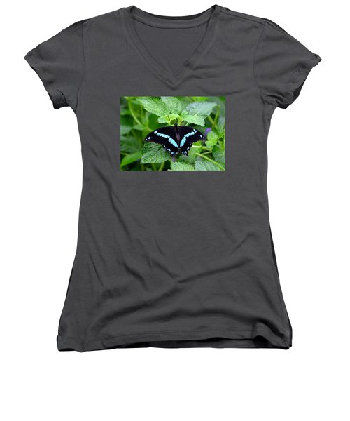 Blue Banded Swallowtail Butterfly Women's V-Neck (Athletic Fit)