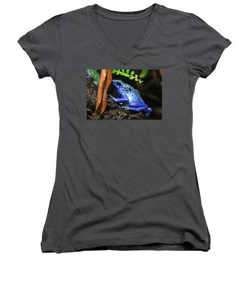 Blue Dart Frog Women's V-Neck (Athletic Fit)