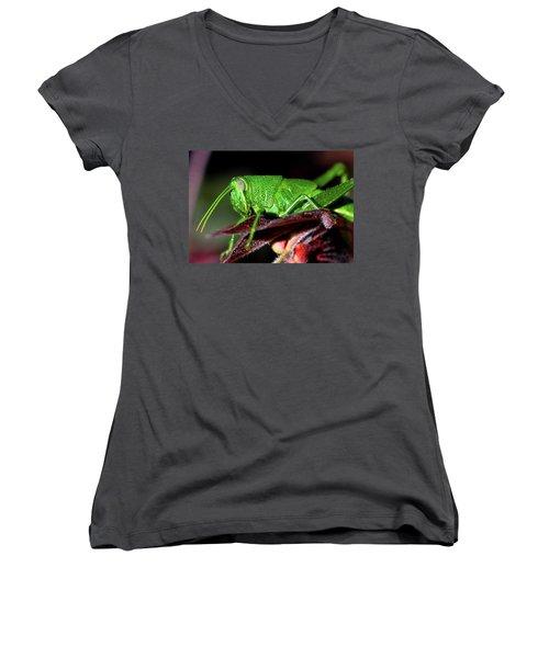 Blue Eyed Green Grasshopper 001 Women's V-Neck (Athletic Fit)