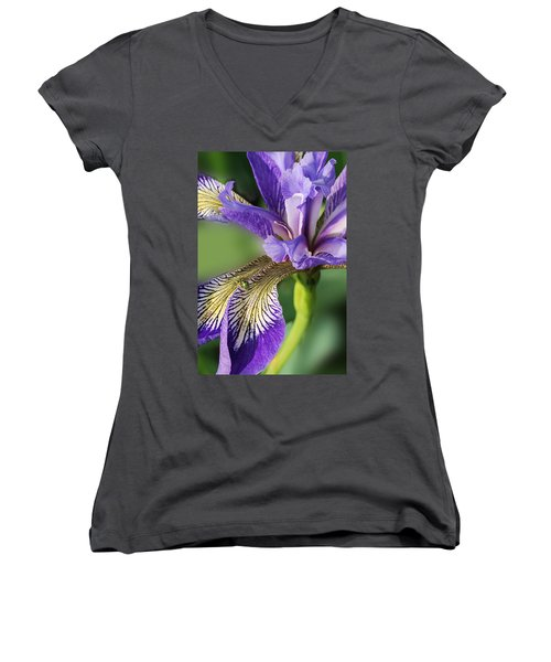 Women's V-Neck T-Shirt (Junior Cut) featuring the photograph Blue Flag  by Susan Capuano