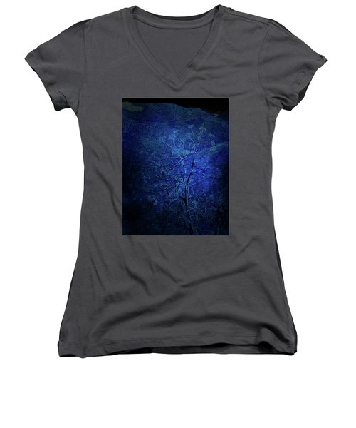 Blue Flowers Women's V-Neck