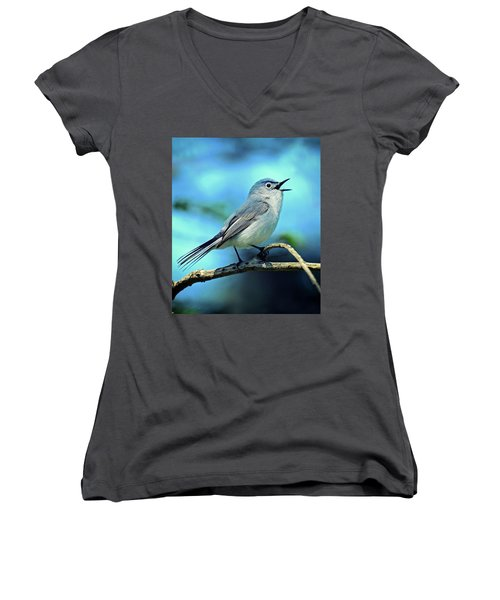 Blue-gray Gnatcatcher Women's V-Neck T-Shirt (Junior Cut) by Rodney Campbell