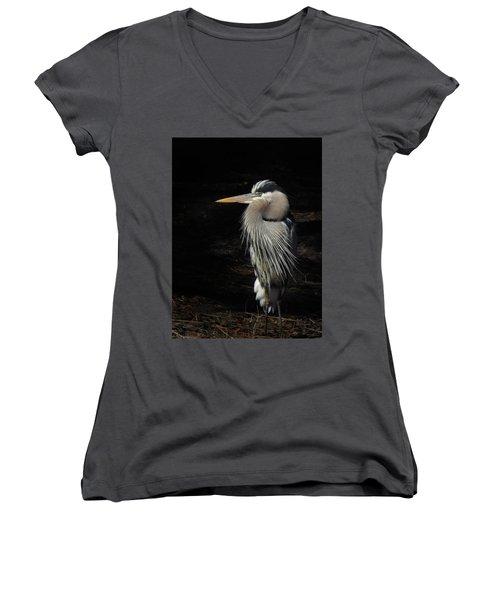 Blue Heron Gaze Women's V-Neck T-Shirt (Junior Cut) by Deborah Smith