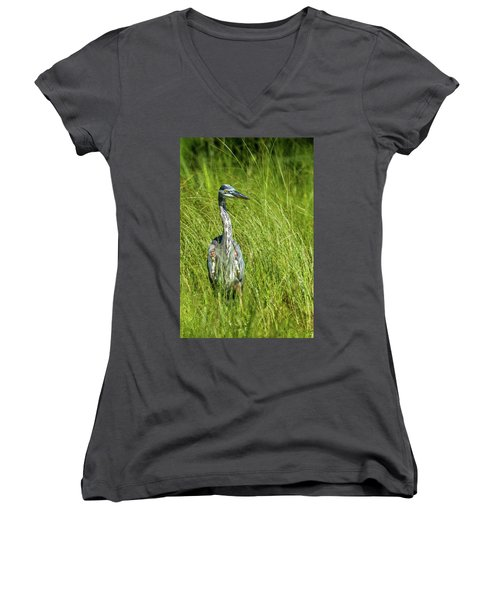 Women's V-Neck T-Shirt (Junior Cut) featuring the photograph Blue Heron In A Marsh by Paul Freidlund