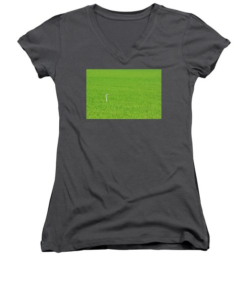 Blue Heron In Field Women's V-Neck T-Shirt (Junior Cut) by Josephine Buschman