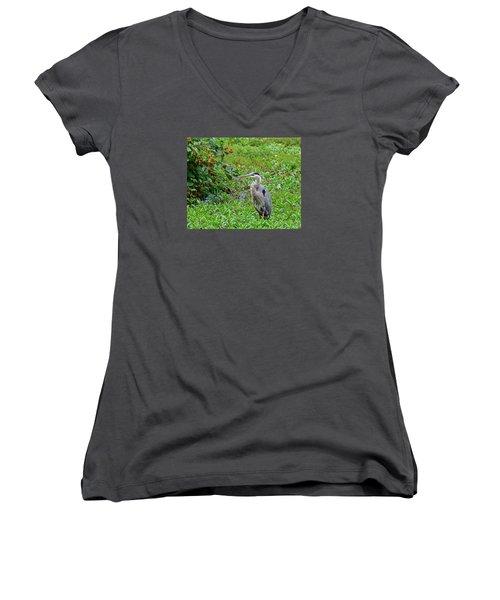 Blue Heron Women's V-Neck T-Shirt (Junior Cut) by Kathy Eickenberg