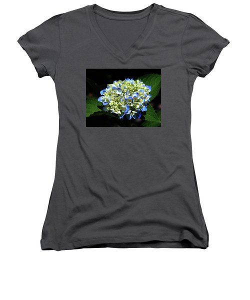 Blue Hydrangea Onstage 2620 H_2 Women's V-Neck T-Shirt