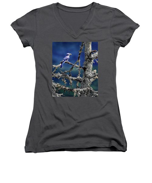 Blue Jay Mountain Women's V-Neck (Athletic Fit)