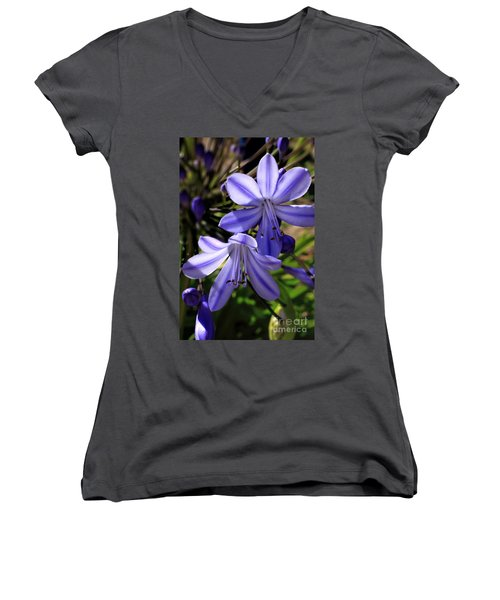Blue Lily Women's V-Neck