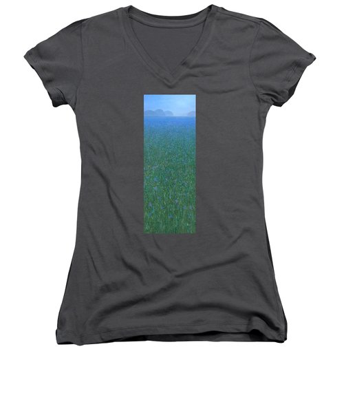 Blue Meadow 2 Women's V-Neck (Athletic Fit)