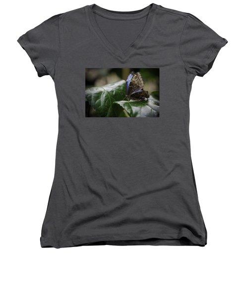 Blue Morpho On A Leaf Women's V-Neck T-Shirt (Junior Cut) by Jason Moynihan