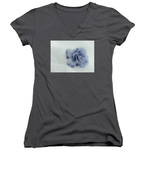 Blue On Blue Women's V-Neck (Athletic Fit)