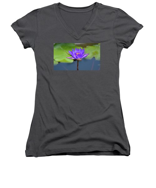Blue Purple And Orange Water Lily Women's V-Neck T-Shirt