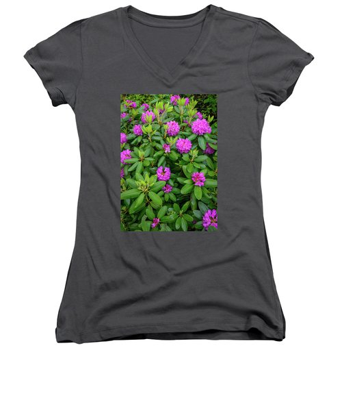 Blue Ridge Mountains Rhododendron Blooming Women's V-Neck