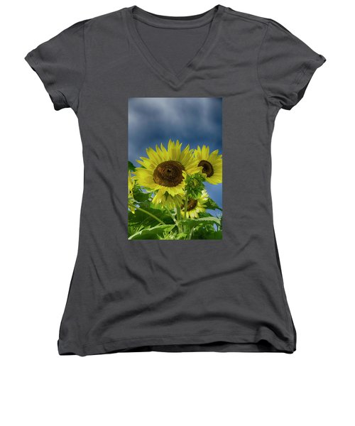 Blue Sky Day Women's V-Neck T-Shirt