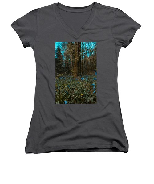 Bluebells In Lismore Forest 2 Women's V-Neck T-Shirt