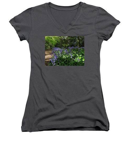 Bluebells3 Women's V-Neck T-Shirt