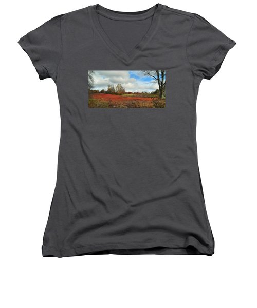 Blueberry Fields Women's V-Neck T-Shirt (Junior Cut) by Jewels Blake Hamrick