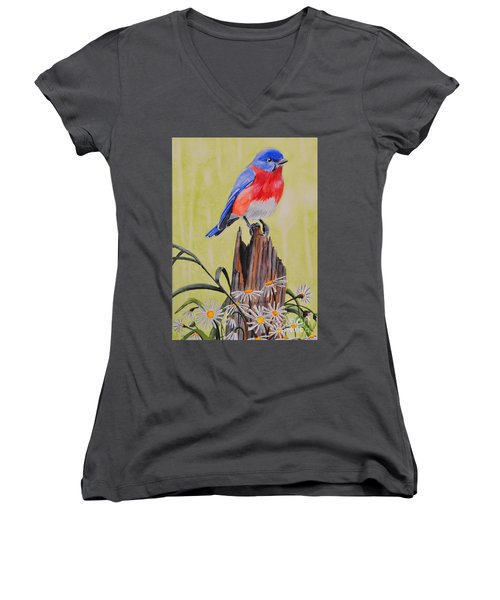 Bluebird And Daisies Women's V-Neck (Athletic Fit)