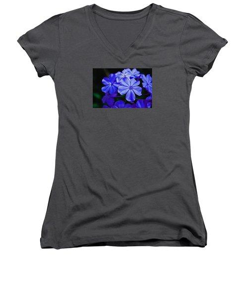 Blue Beauty Women's V-Neck T-Shirt