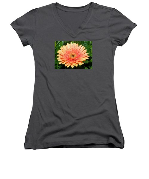 Blushing Zinnia Women's V-Neck T-Shirt