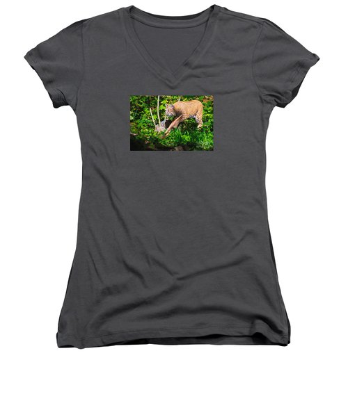Bobcat At Water's Edge Women's V-Neck T-Shirt (Junior Cut) by Ansel Price