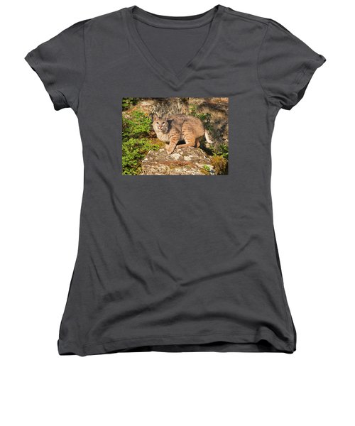 Bobcat On Rock With Tongue Out Women's V-Neck (Athletic Fit)