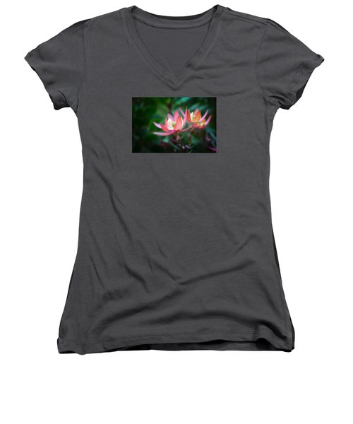 Botanic Garden Of Wales 1 Women's V-Neck (Athletic Fit)