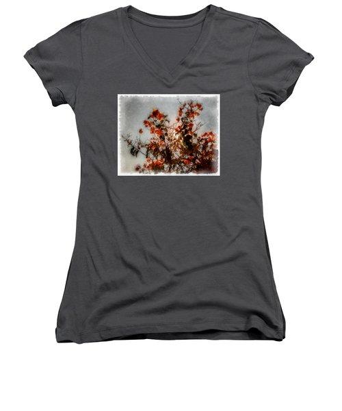 Bougainvillea Women's V-Neck T-Shirt