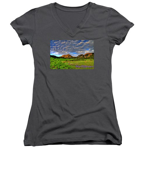 Boulder Spring Wildflowers Women's V-Neck T-Shirt (Junior Cut) by Scott Mahon