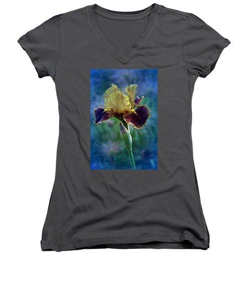 Vintage Boy Wonder Iris Women's V-Neck T-Shirt