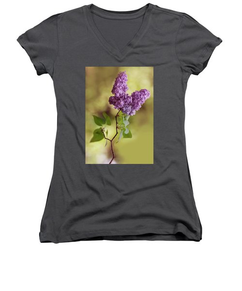 Branch Of Fresh Violet Lilac Women's V-Neck (Athletic Fit)