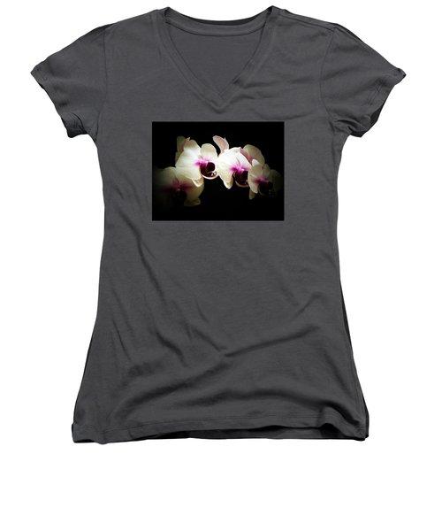 Breathless Beauty Women's V-Neck T-Shirt