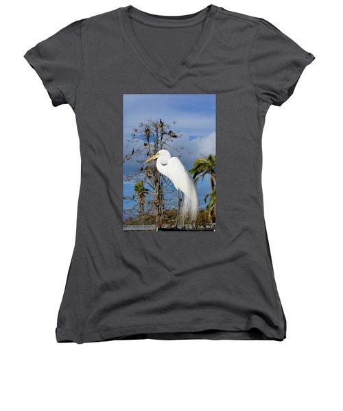 Breezy Egret Women's V-Neck T-Shirt
