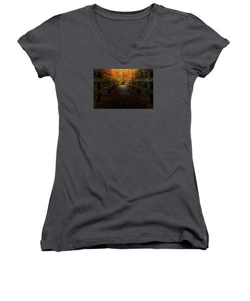 Bridge To Enlightenment Women's V-Neck T-Shirt (Junior Cut) by Ed Clark