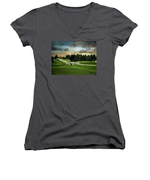 Bridge Women's V-Neck T-Shirt