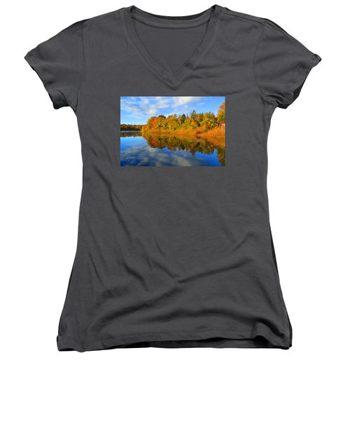 Brilliance Of Autumn Women's V-Neck (Athletic Fit)