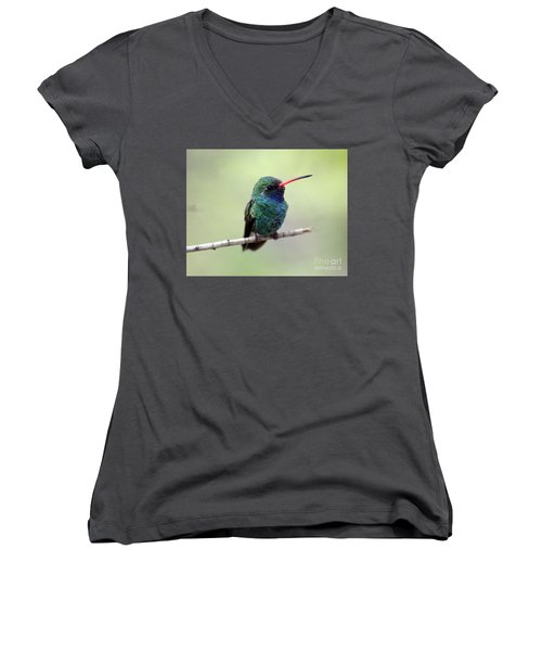 Broad-billed Hummingbird Portrait Women's V-Neck T-Shirt