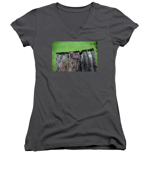 Brock's Leaf Women's V-Neck