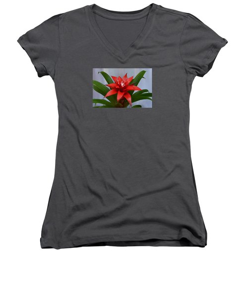 Bromeliad Women's V-Neck T-Shirt (Junior Cut) by Terence Davis