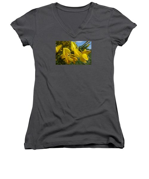 Broom In Bloom 3 Women's V-Neck