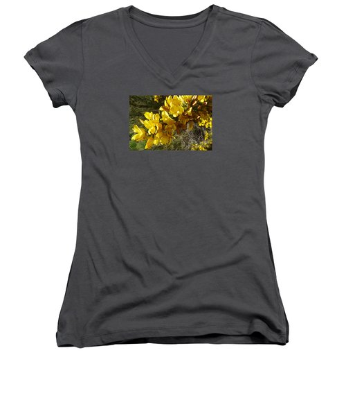 Broom In Bloom Women's V-Neck