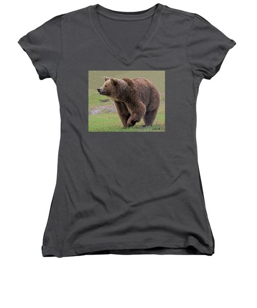 Brown Bear 14.5 Women's V-Neck (Athletic Fit)