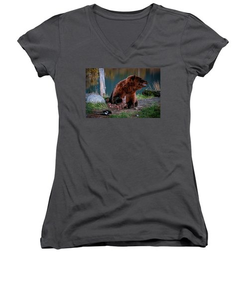 Brown Bear And Magpie Women's V-Neck (Athletic Fit)