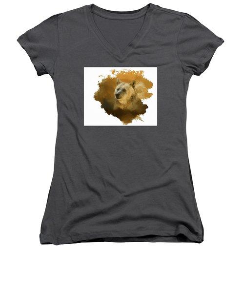 Brown Bear Women's V-Neck T-Shirt (Junior Cut) by Steven Richardson