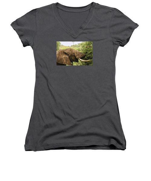 Women's V-Neck T-Shirt (Junior Cut) featuring the photograph Browsing Elephant by Gary Hall
