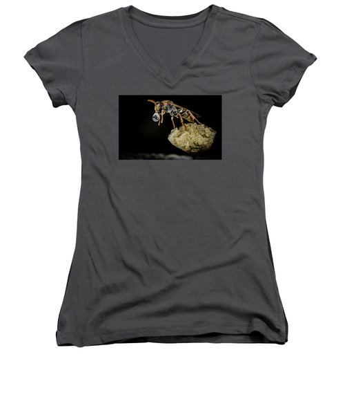 Bubble Blowing Wasp Women's V-Neck